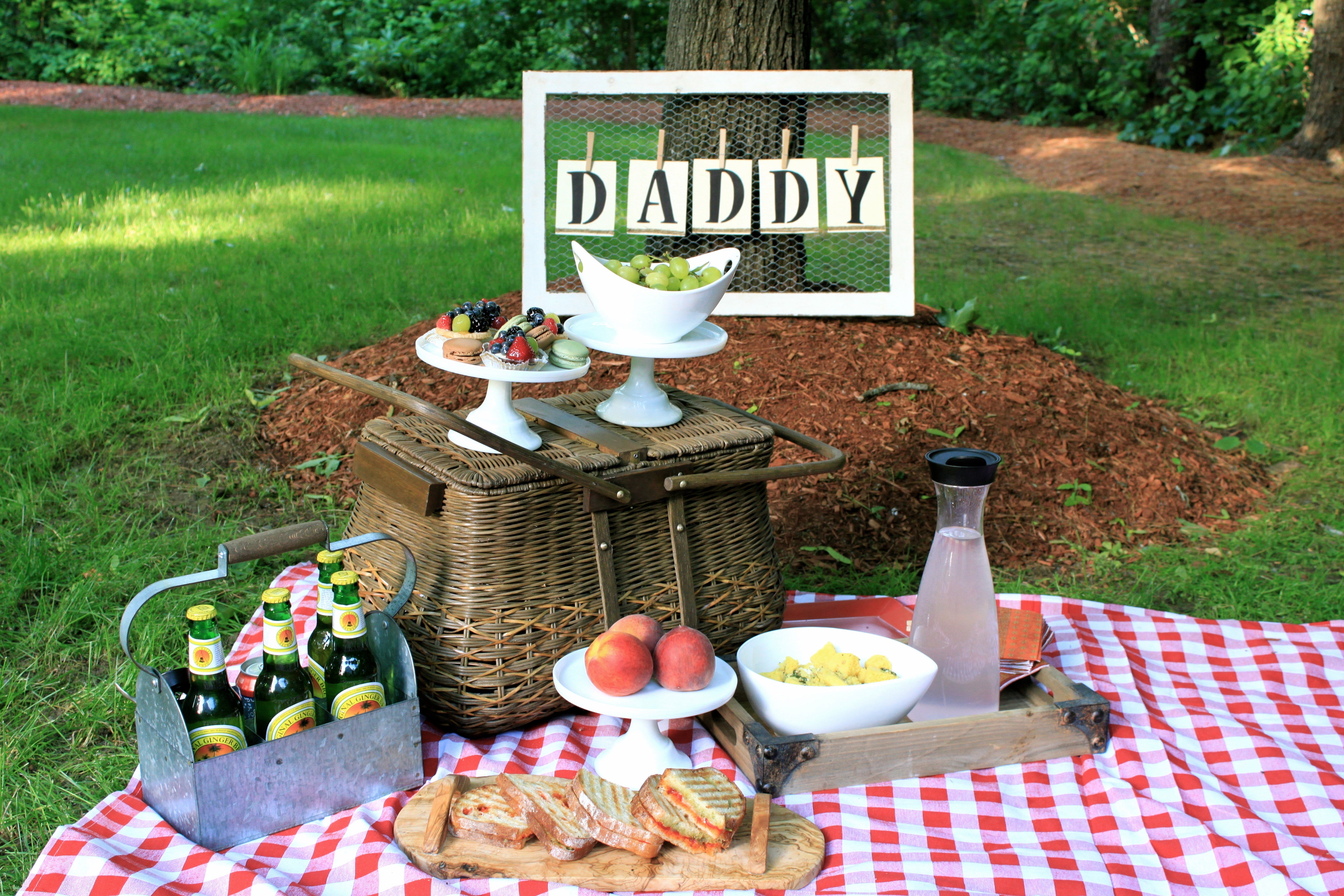 Father S Day Picnic Tutus Amp Toads